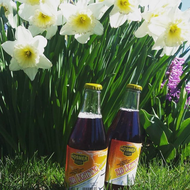 Amazingly warm today! lightninghosmer spring flowers hosmermountain getyousome Lightning energydrink
