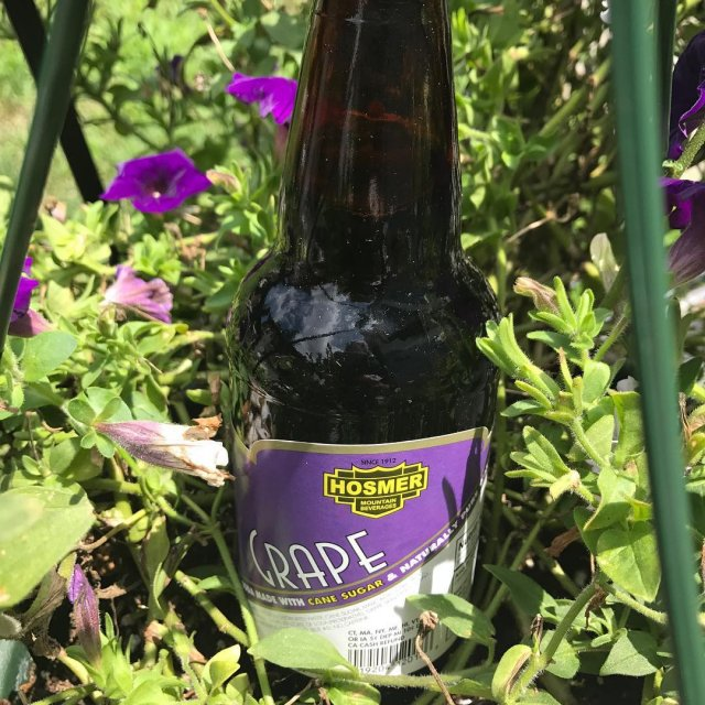 Flavor of the Day! grape canesugar hosmermountainsoda